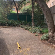 Outdoor lot parking on Palmer Street in Parramatta New South Wales 2150