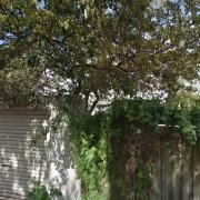 Outdoor lot parking on Mill Hill Road in Bondi Junction
