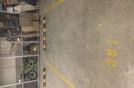 Space Photo: Brushbox Street  Sydney Olympic Park NSW  Australia, 92248, 183677