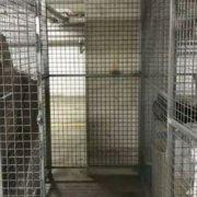 Storage Cage storage on Burwood Rd in Burwood