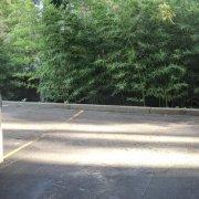 Undercover parking on Carr Street in Waverton
