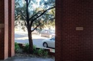 Space Photo: Terrace Rd  Dulwich Hill NSW 2203  Australia, 39106, 177617