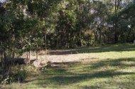 Space Photo: Peanba Park Rd  Upper Coomera QLD 4209  Australia, 35287, 15986