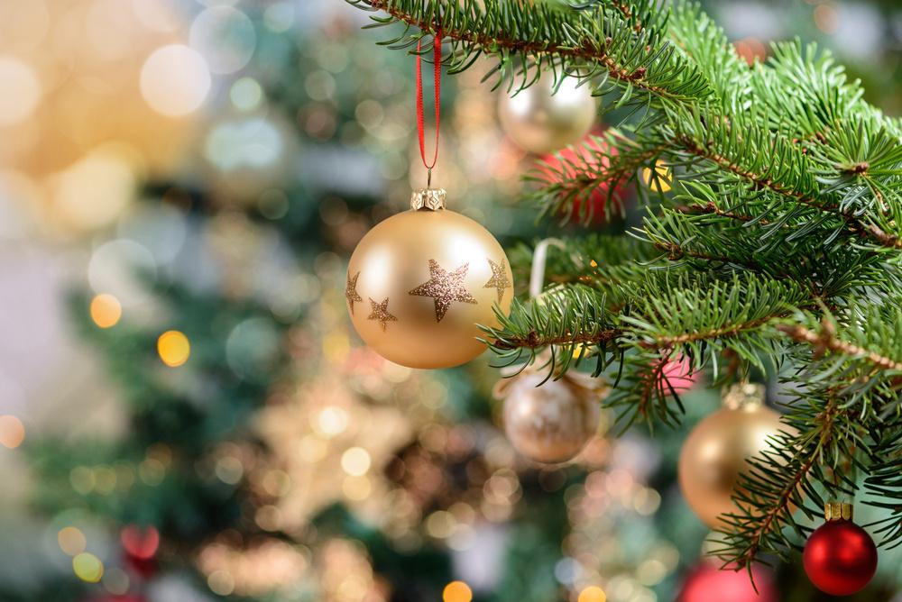 Christmas Countdown #6: Where Should I Buy My Christmas Tree?